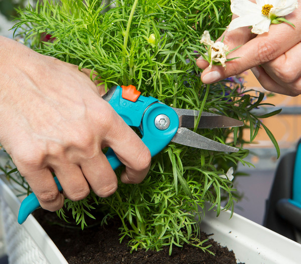 GARDENA City Gardening Balkonschere