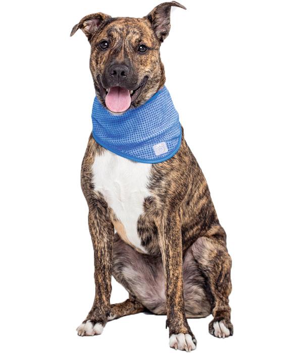 GF PET® Kühlbandana für Hunde