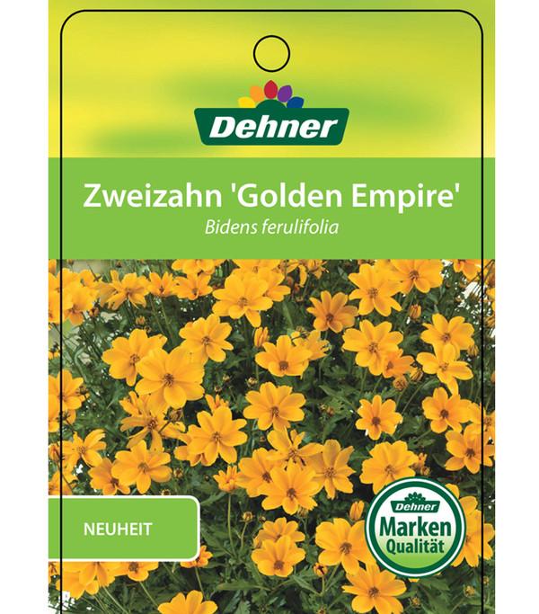 Goldmarie 'Golden Empire'