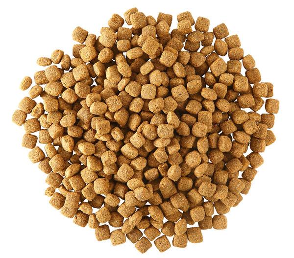 Gute Wahl Trockenfutter Adult, Lamm und Reis