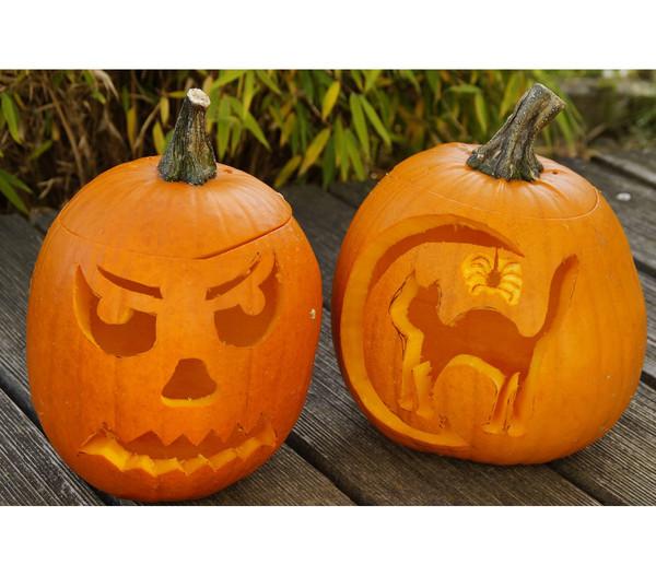 Halloween Kürbis Groß Dehner