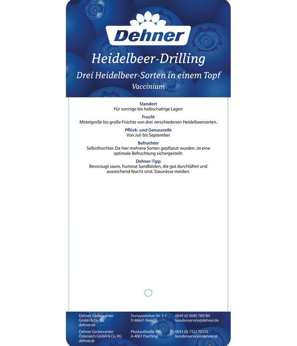 Heidelbeer-Drilling