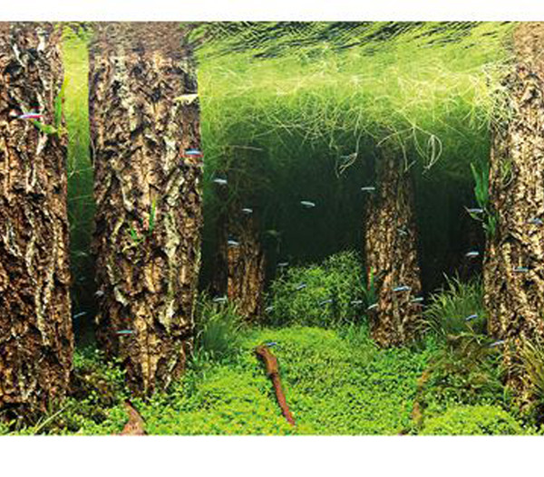 Hobby® Aquarium Rückwand Scaper's Hill/Scaper's Forest