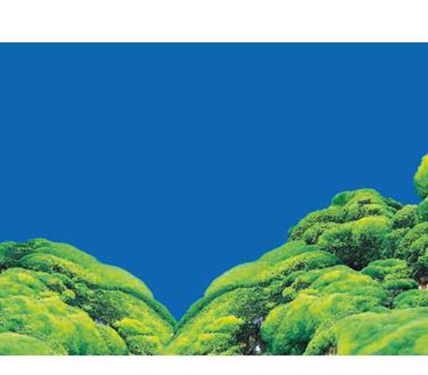 Hobby® Aquarium Rückwand Spring/Moss