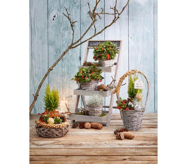 Holz-Etagere für Blumentöpfe