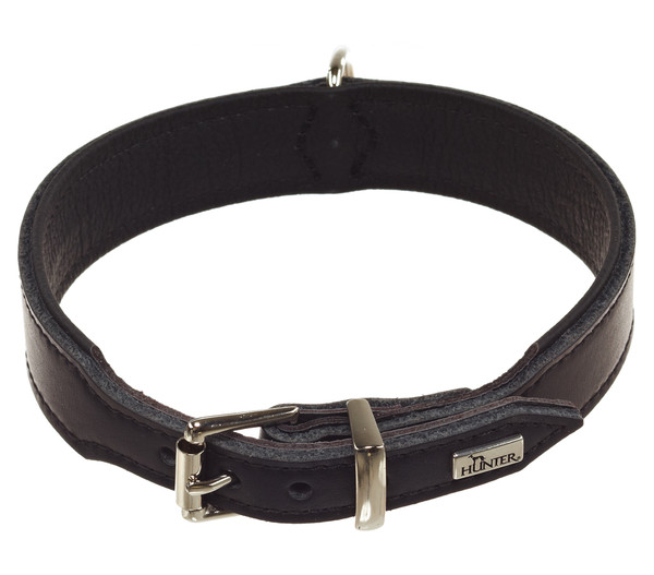 HUNTER® Hundehalsband Basic, schwarz
