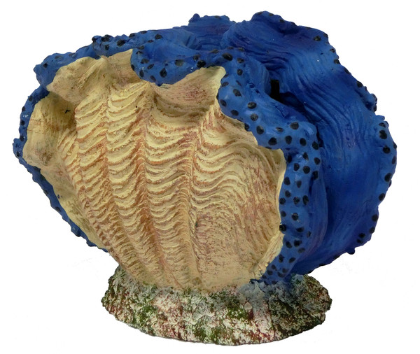 hydor Ocean Wonders blau Riesenmuschel + LED blau, Aquariumdeko
