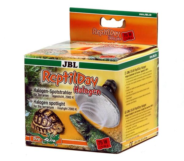 JBL Terrarien-Halogen-Spotstrahler ReptilDay