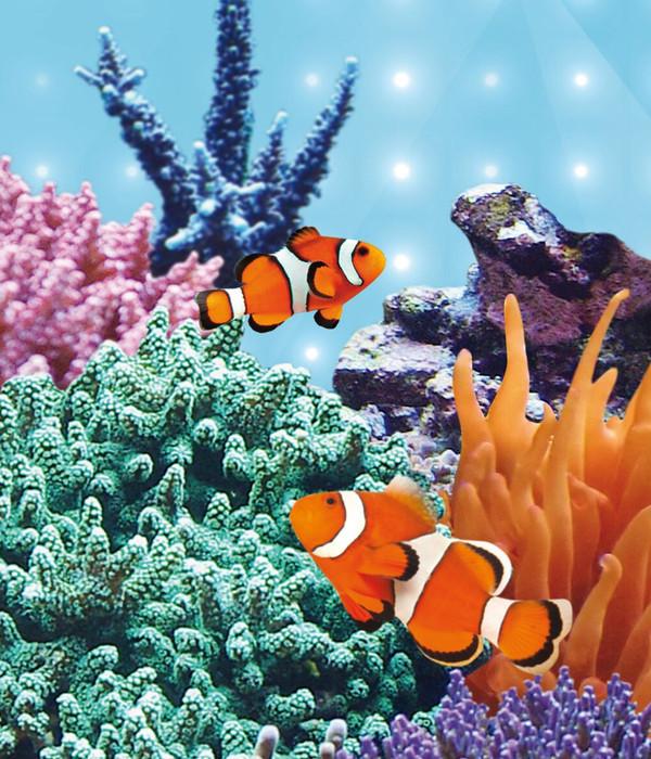 JUWEL® AQUARIUM Aquariumbeleuchtung LED Blue