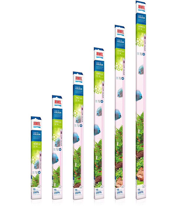 JUWEL® AQUARIUM Leuchtstoffröhren T5 HiLite Colour
