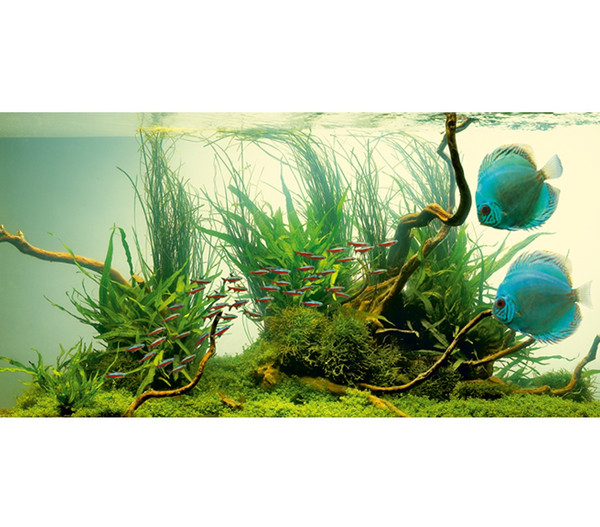 JUWEL® AQUARIUM Leuchtstoffröhren T5 HiLite Nature