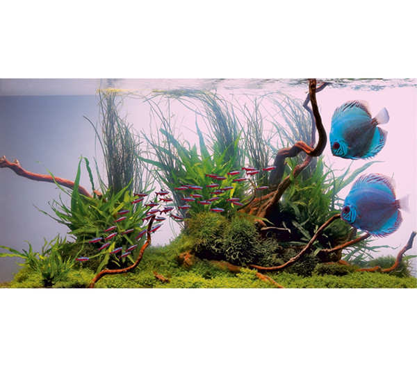 JUWEL® AQUARIUM Leuchtstoffröhren T8 Colour-Lite