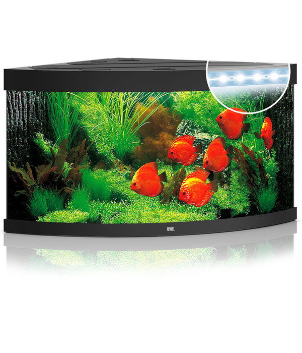 JUWEL® AQUARIUM Trigon 350 LED