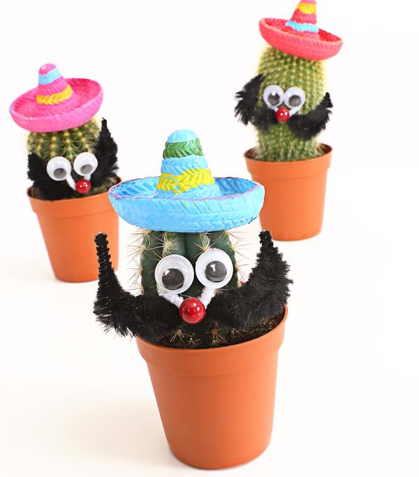Kaktus 'Mexikaner'