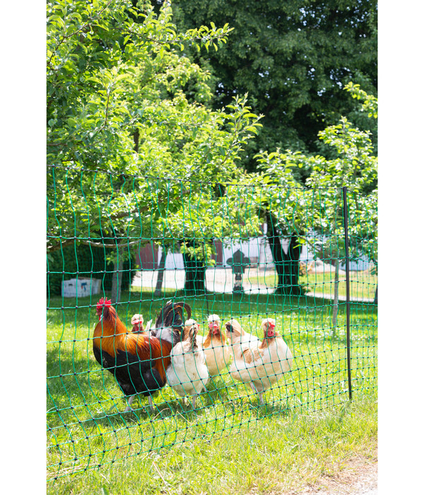 KERBL Geflügelnetz PoultryNet, elektrifizierbar, Doppelspitze