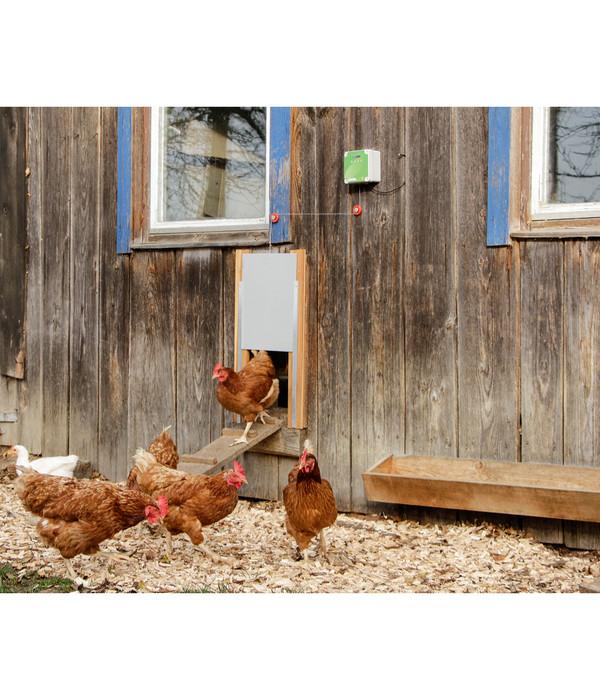 KERBL Hühnerstallzubehör Steuerung für Hühnertüre