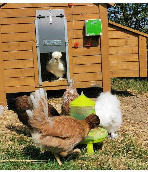 KERBL Hühnerzubehör Futterautomat mit Standfüßen