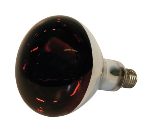 KERBL Infrarotlampe, Hartglas