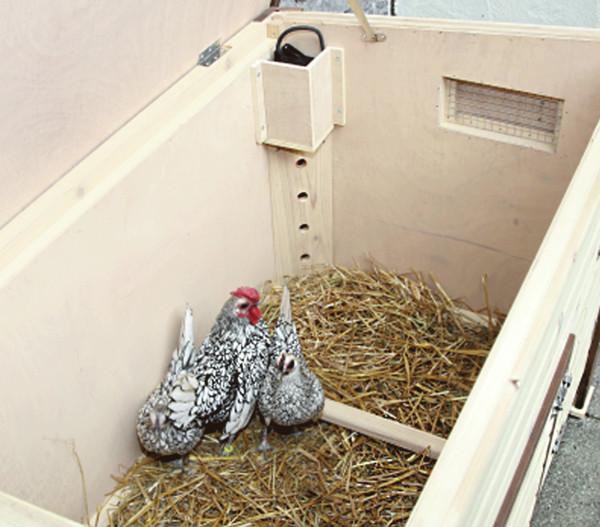 KERBL Thermo-Hühnerstall, beheizbarer