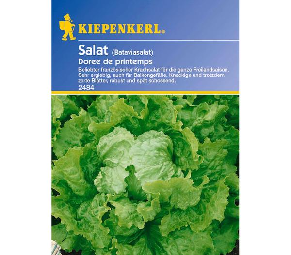 Kiepenkerl Saatgut Salat 'Doree de printemps'