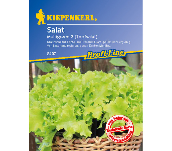 Kiepenkerl Saatgut Salat 'Multigreen 3'