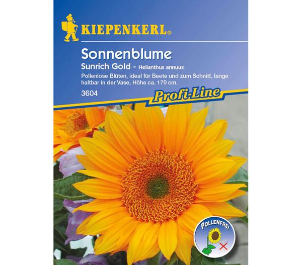 Kiepenkerl Saatgut Sonnenblume Sunrich Gold