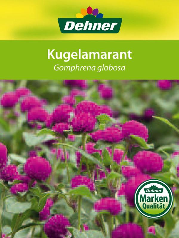 Kugel-Amarant