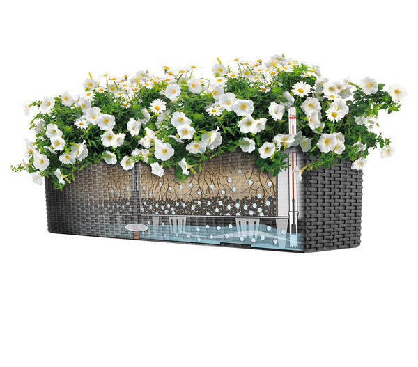 LECHUZA® Blumenkasten Balconera Cottage, rechteckig