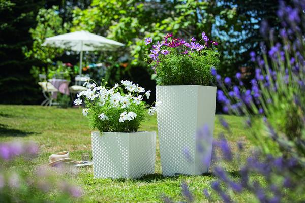 LECHUZA® Blumenkübel Cube Cottage, quadratisch