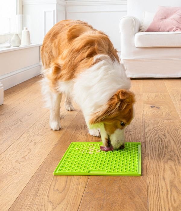 LickiMat® Hundenapf Leckmatte Buddy Large