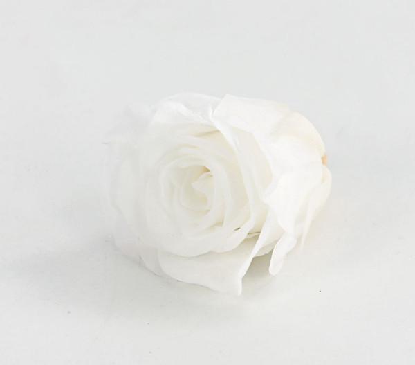 Long-Life-Rose, Ø 3 - 3,5 cm