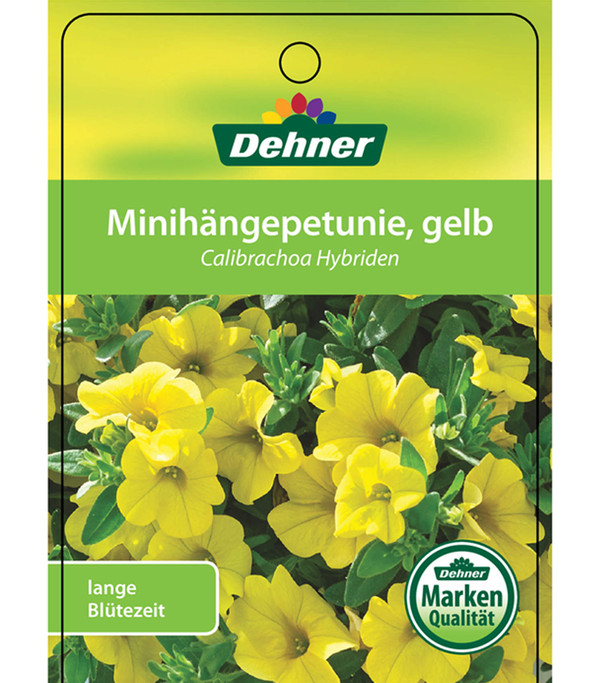 Minihängepetunie, gelb