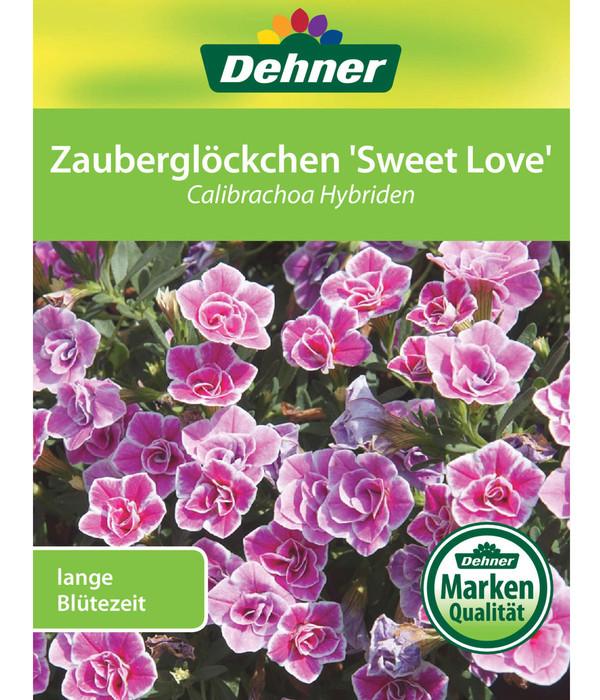 Minihängepetunie, Zauberglöckchen 'Sweet Love'