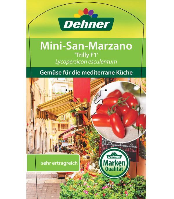 Mini-San-Marzano Tomate 'Trilly'