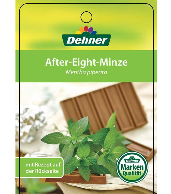 Minze 'After Eight'