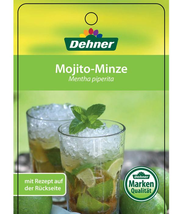 Mojito-Minze