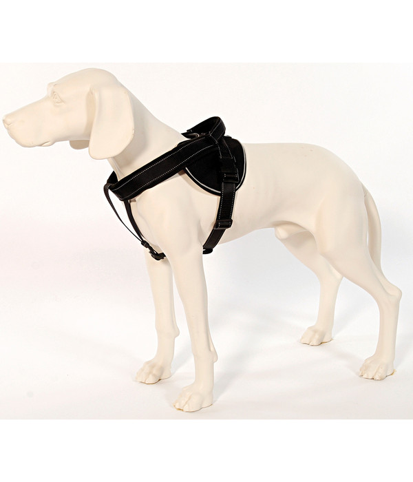 Patento Pet® Hundegeschirr Jockey
