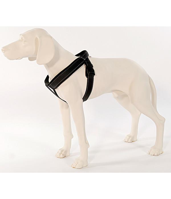 Patento Pet® Hundegeschirr Sport