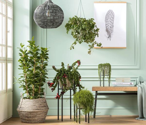 Pflanzenpodest aus Metall
