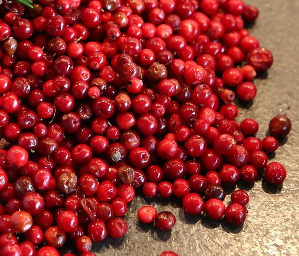 Preiselbeere 'Red Pearl'