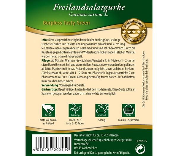 Quedlinburger Freilandsalatgurke 'Burpless Tasty Green'