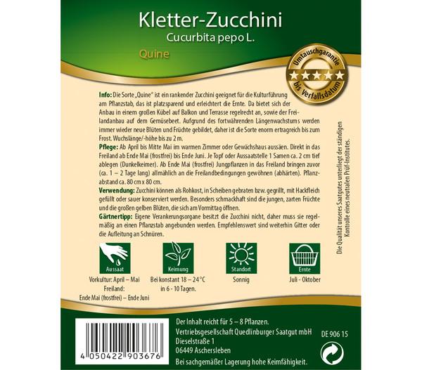 Quedlinburger Samen Kletter-Zucchini 'Quine'