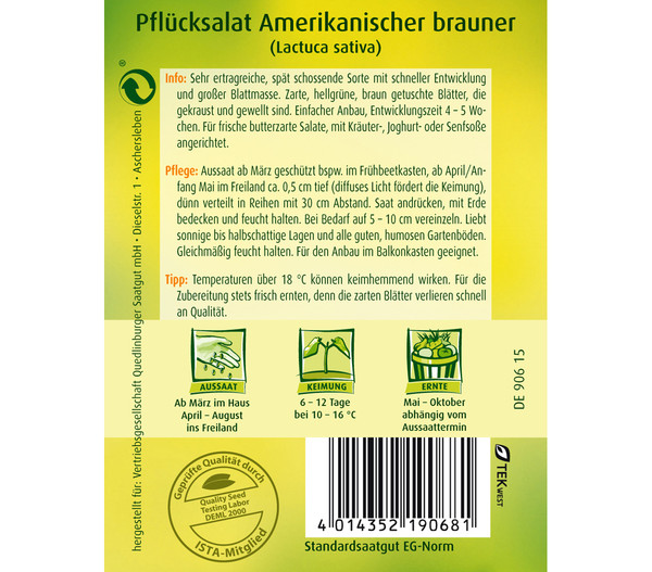 Quedlinburger Samen Pflücksalat 'Amerikanischer Brauner'