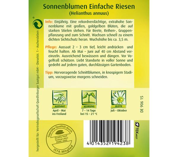 Quedlinburger Samen Sonnenblumen 'Einfache Riesen'