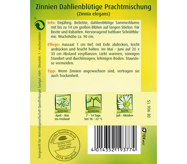 Quedlinburger Samen Zinnie 'Dhalienblütige Mischung'