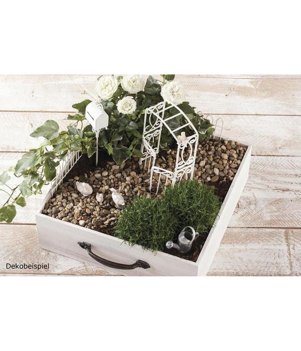 Rayher Mini-Gardening-Set Rose Garden, 9-teilig