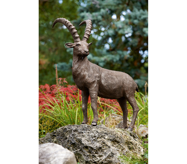 Rottenecker Bronzefigur Steinbock groß