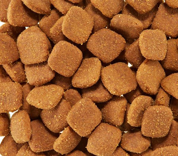 Royal Canin Golden Retriever 25 Adult, Trockenfutter