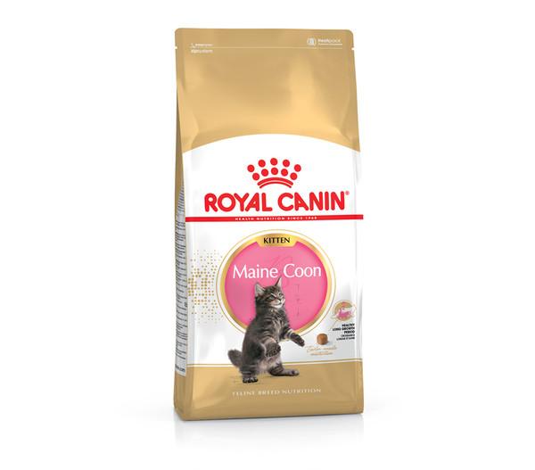 Royal Canin Trockenfutter Maine Coon Kitten, 400g