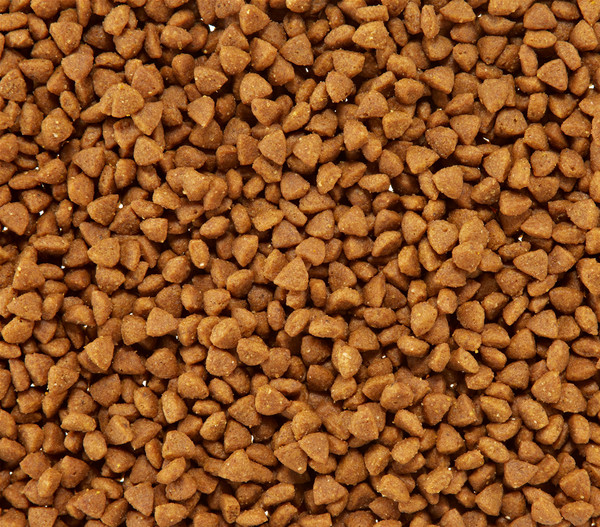 ROYAL CANIN® Trockenfutter X-Small Puppy